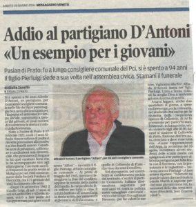 articolo D'Antoni